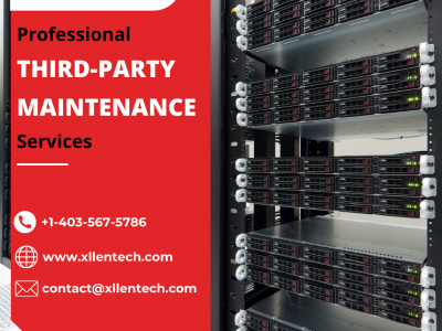 Professional Third-Party Maintenance Services