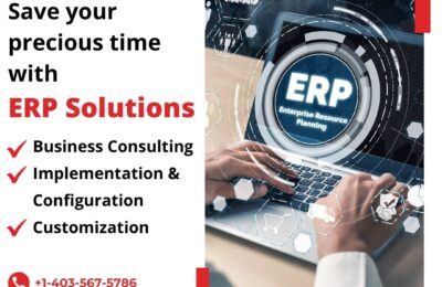 Save Your Precious Time With ERP Solutions
