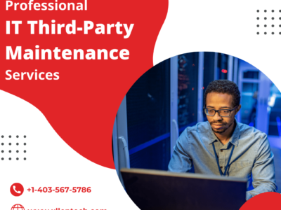 Professional IT Third-Party Maintenance Services