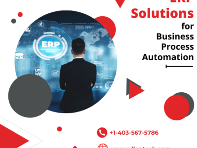 ERP Solutions For Business Process Automation